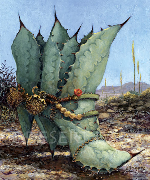 Agave Country