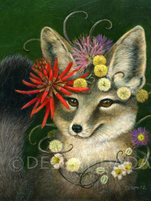Kit Fox in Coral