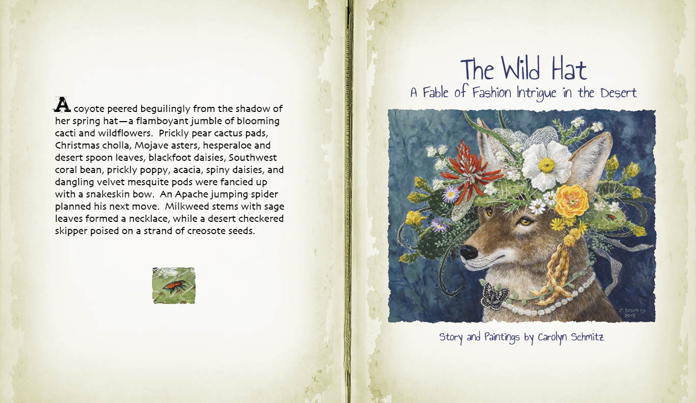 The Wild Hat promo2a
