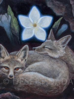 Foxes Dreaming of the Vanishing Blue Star Print
