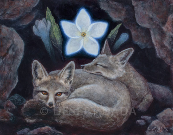 Foxes Dreaming of the Vanishing Blue Star